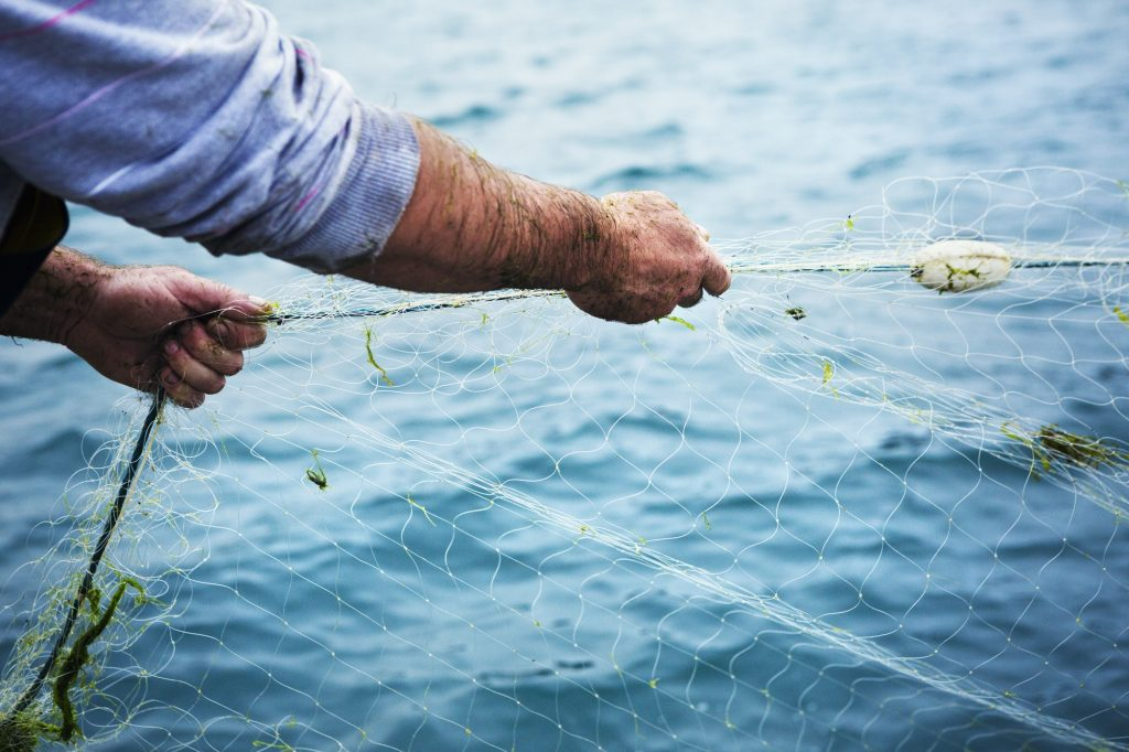 A fisherman pulling the net out of the water.